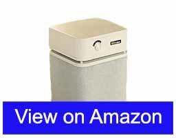Austin-Air-Healthmate-Standard-Best-air-purifier-for-mold